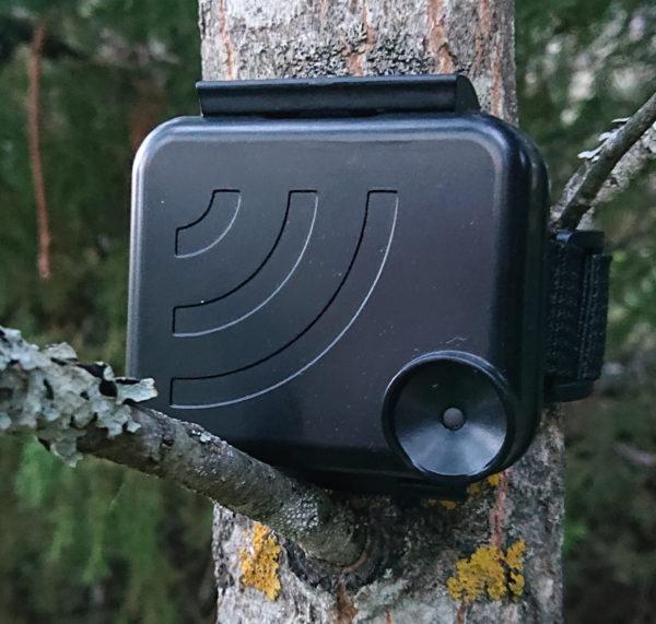 Audiomothin musta suojakotelo puussa